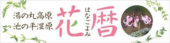 hanagoyomi_banner