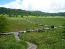 池の平湿原1