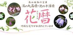 湯の丸高原花暦
