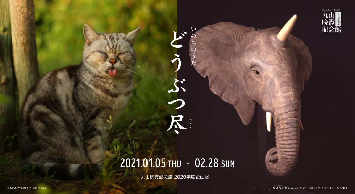 doubutsu-zukushi_01